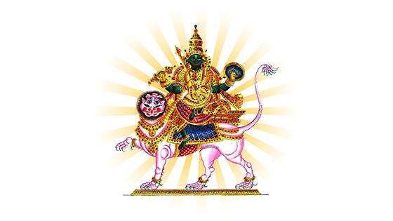 Rahu Shanti Puja
