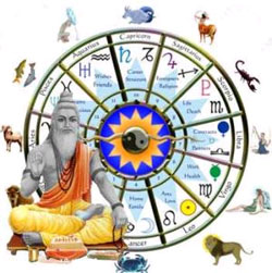 KP Astrology, KP Astrologer