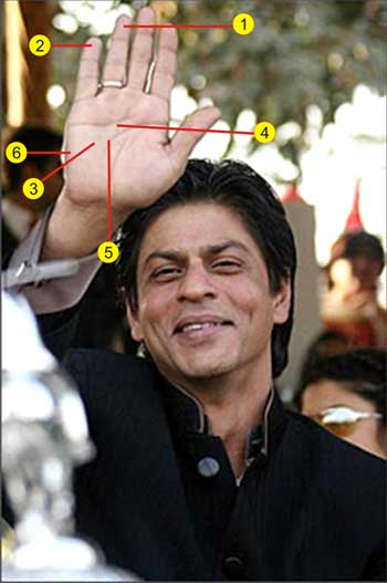 Shah Rukh Khan's Palm Reading : The Hand Of Success